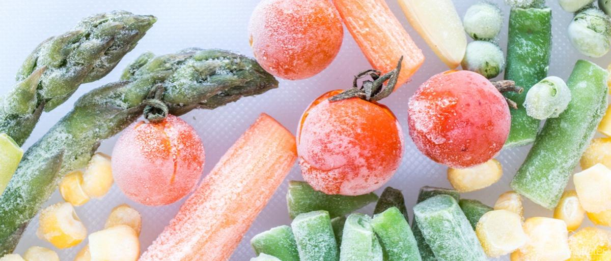 Meyve Sebze Dondurma Yöntemleri