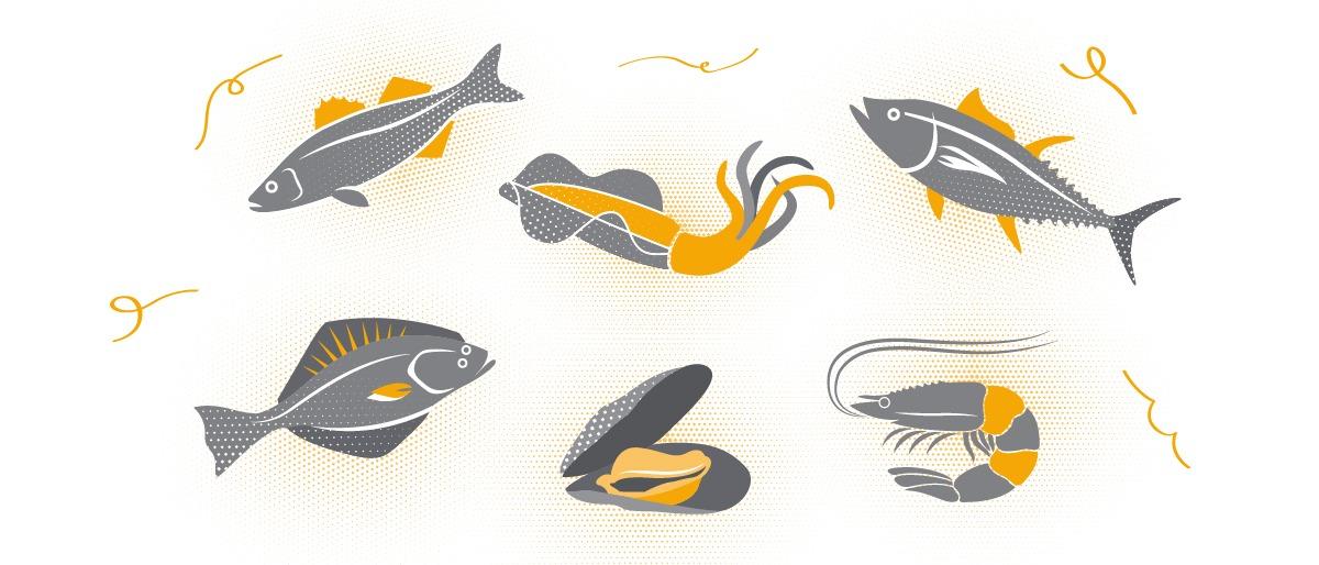 Balık, Deniz Mahsulleri Çeşitleri ve Tazeliği Anlamak