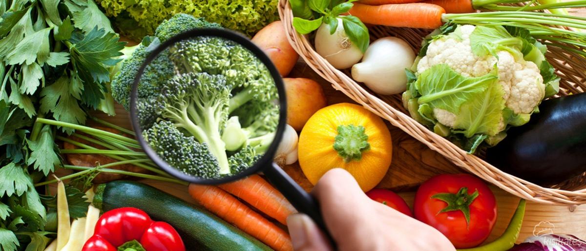 Gıda Güvenliğinin Önemi
