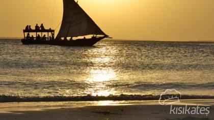 Afrika'ya Giriş Yahut Zanzibar